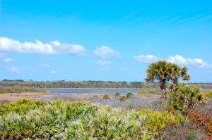 ponte vedra beach homes for sale guana preserve