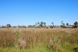 marsh front real estate Ponte Vedra Beach